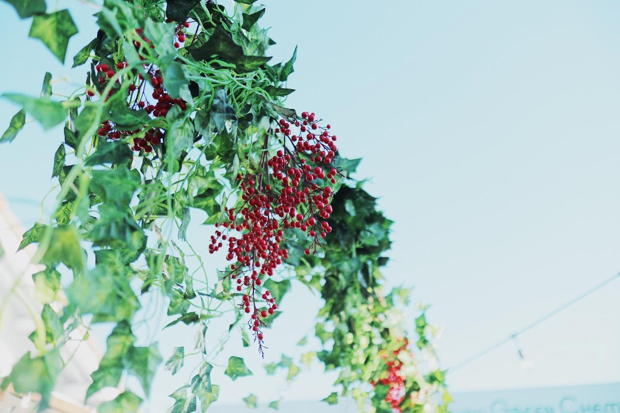 クリスマスマルシェ会場装飾